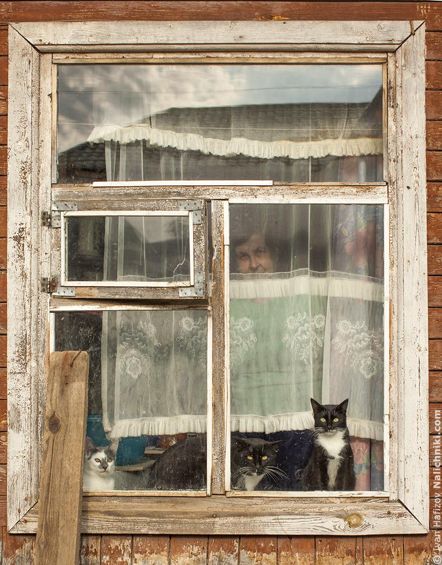 Окно деревянного дома из Малоярославца