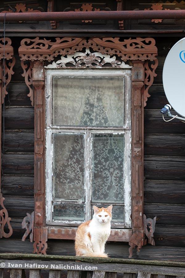 Русский наличник и русский кот