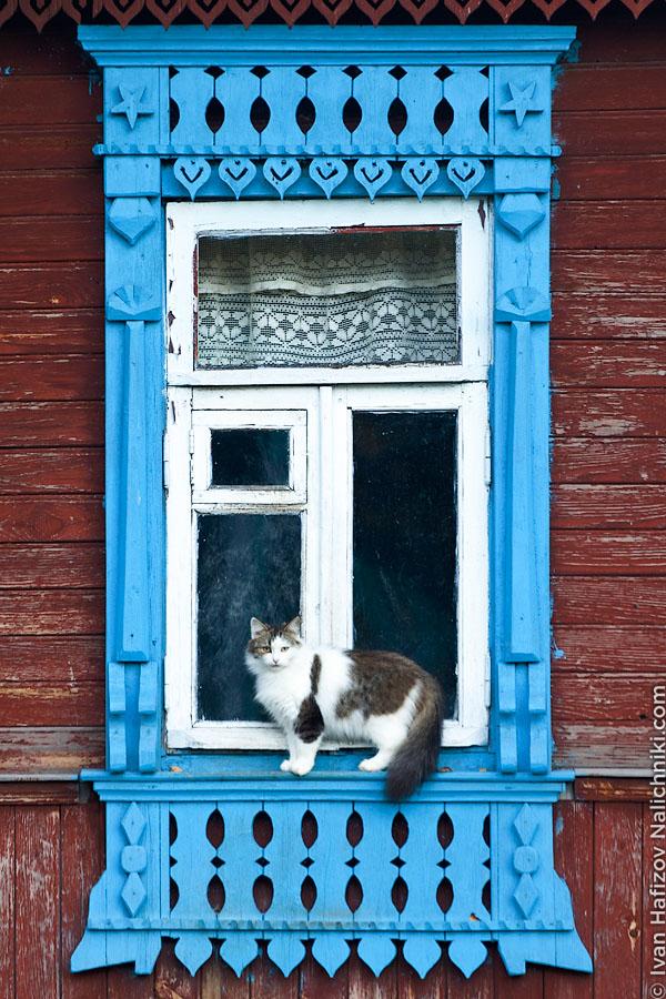 шуйский наличик с кошкой