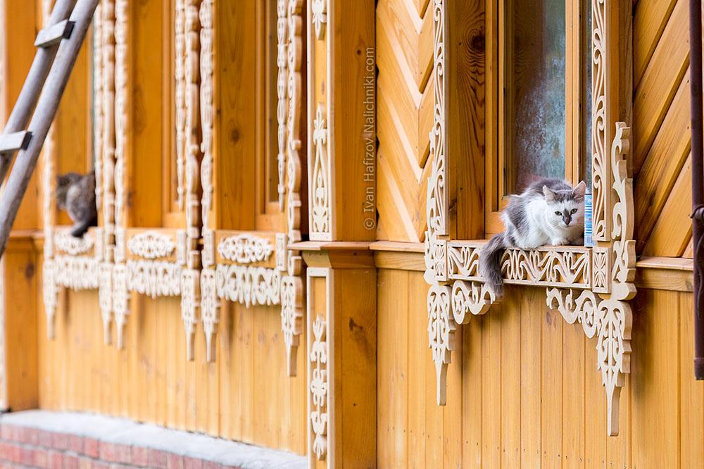 Кошка на подоконнике окна с резным наличником
